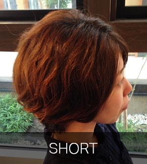 short_img_cate